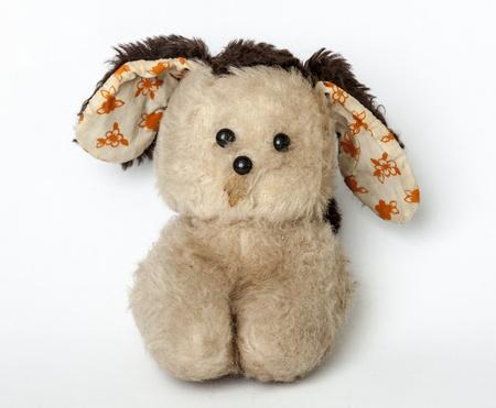Stuffed animal on a white background photo