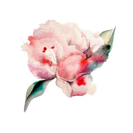 Hand geschilderd aquarel Pioenen. Aquarel Stock Illustratie