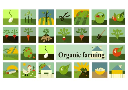 Set of icons. Organic farming. Vector