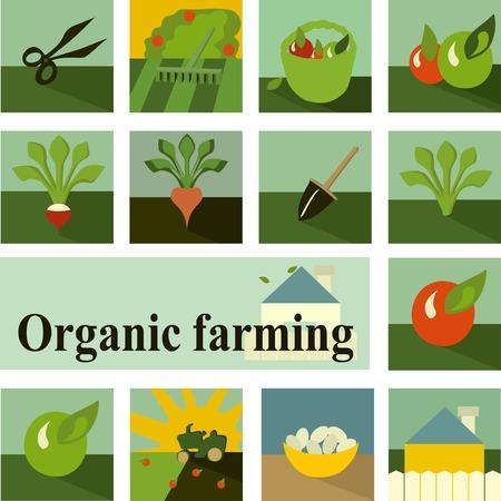 Set of icons. Organic farming. Vector. Vector