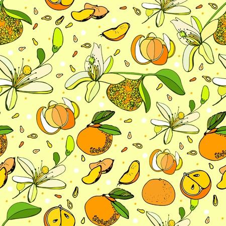mandarins: fresh mandarins background