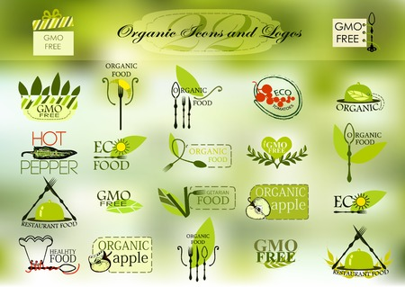 vegetarian cuisine: Organic icons and icon for your design
