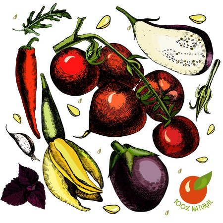 collect: Set with vegetables, tomato, eggplant, zucchini, garlic, hot pepper, basil Illustration