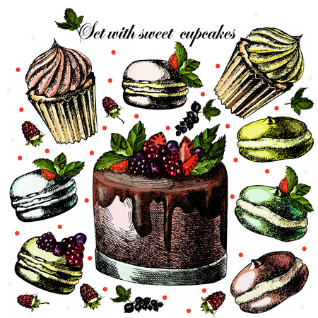 Set with sweet cupcakes Vector