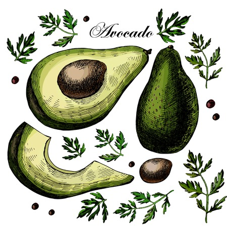 aguacate: Set con aguacate