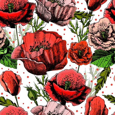 pattern with bright colorful poppies Ilustração