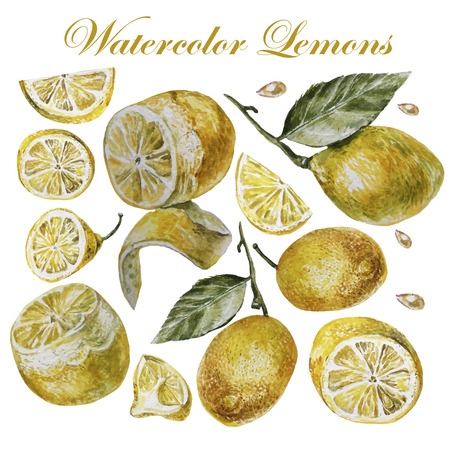 Watercolor lemon isolation on a white background.