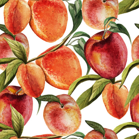 Watercolor pattern with  peaches. Vector