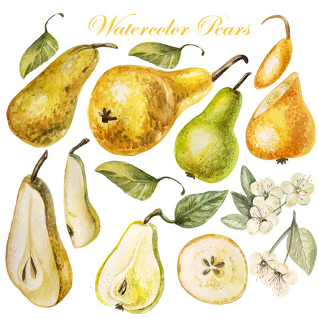 pear: Set with watercolor pears