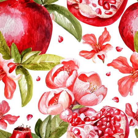 pomegranate: Beautiful watercolor pattern with fruits and flowers of pomegranate.  Vector. Illustration