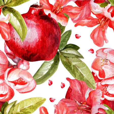 Beautiful watercolor pattern with fruits and flowers of pomegranate.  Vector. Çizim