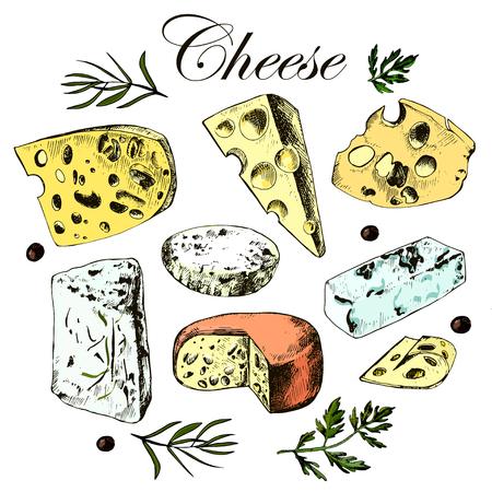 queso rayado: Dibujo a mano conjunto con diferentes quesos. Vector.