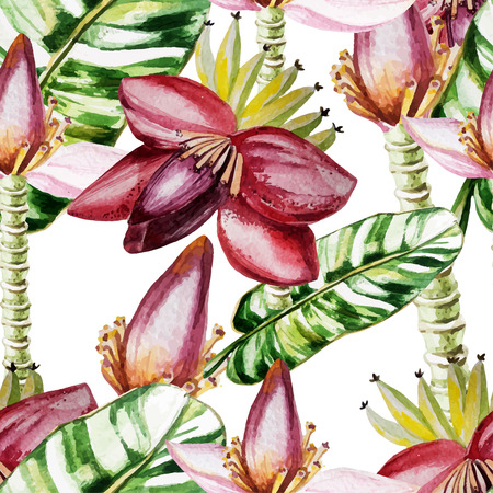 Water color pattern with flowers and banana leaves. Vector illustration Illustration