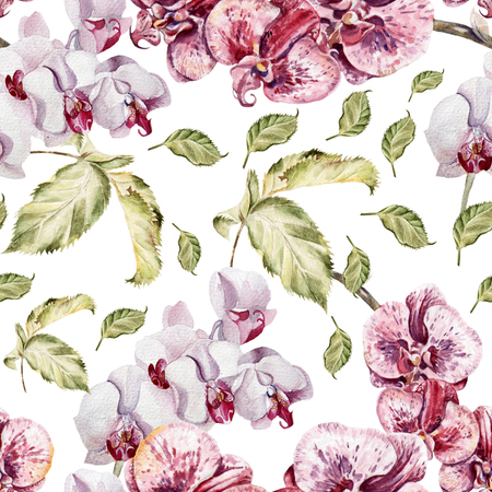 orchid tree: Seamless pattern with orchid flowers and leaves. Illustration. Stock Photo