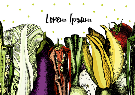 zucchini: Illustrations with fresh vegetables, cabbage, peppers, zucchini, tomatoes and onions. Vector.
