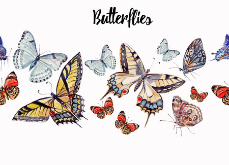 white butterfly: watercolor beautiful butterflies  Illustration Stock Photo
