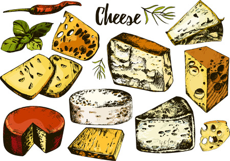 grated cheese: hand drawing set with different cheeses. Vector.