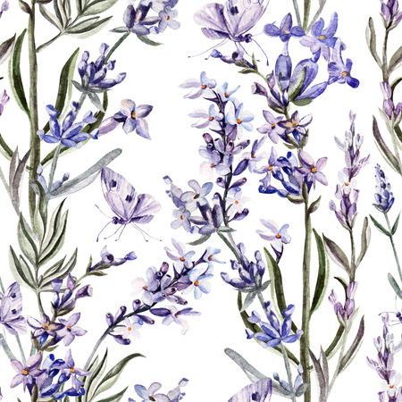Watercolor pattern with lavender flowers. Illustration
