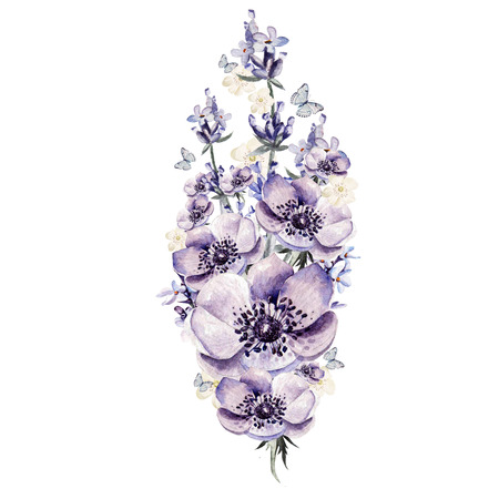 Bunch of lavender flowers, anemone. Watercolor illustration Stock Photo