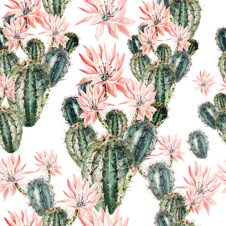 Watercolor pattern with cactus . Illustration Stock Photo