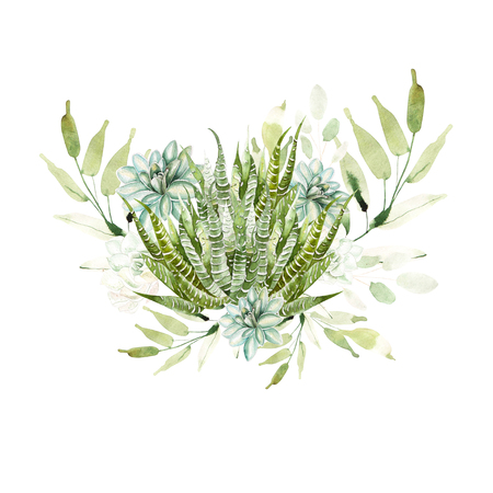Watercolor bouquet with cacti and succulents. Ilustration Stock Photo