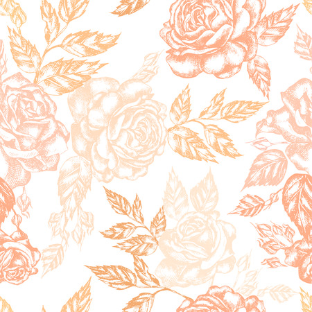 Beautiful graphic set with flowers rose and leaves. Illustration 免版税图像 - 112299556
