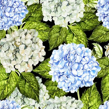 Bright colorful seamless pattern with flowers and leaves of hudrangea. Illustration Фото со стока
