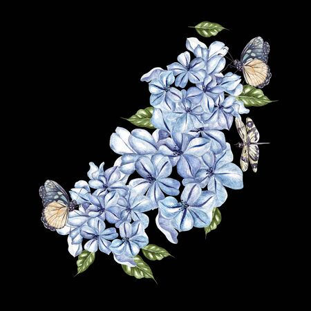 Watercolor bouquet with flowers of plumbago and butterfly. Illustration Imagens