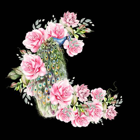 Watercolor colorful wreath with peony, roses, succulent flowers and peacock bird. Illustration.  版權商用圖片