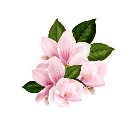 Beautiful wedding Bouquet  with magnolia flowers. Illustration 版權商用圖片