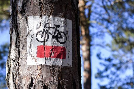 a ban on bicyclists in the forest Stockfoto