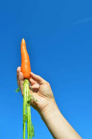 carrot lift off