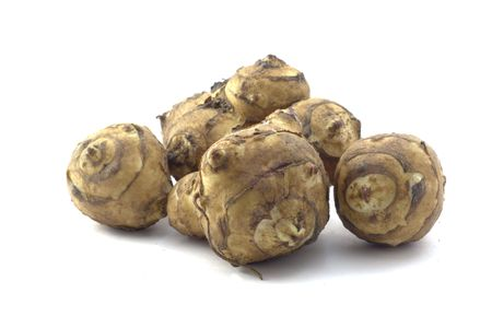 Sunroot also known as Jerusalem artichoke or tupinambur
