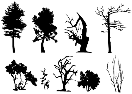 deciduous forest: Set of  trees silhouette (with and without leaves). Some bushes.