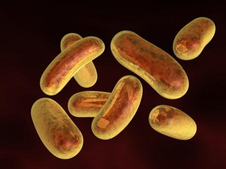 escherichia coli: 3d rendered bacteria on dark red background Stock Photo
