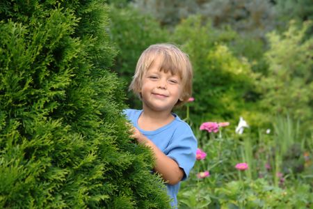 little boy hiding in the garden photo