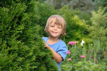 little boy hiding in the garden photo