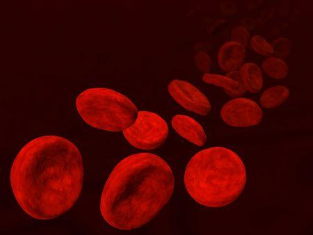 haemoglobin: 3d rendered image of erythrocytes flow