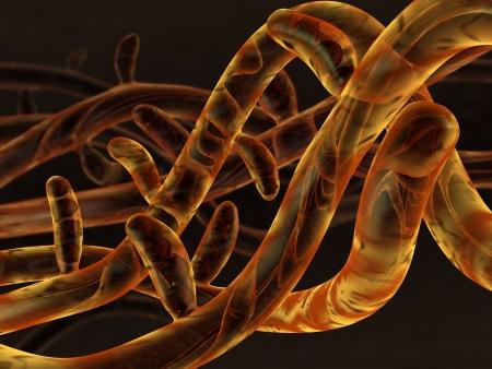 esporas: 3D micelium de hongos representado con esporas