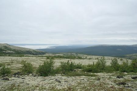 alpine tundra: Tundra landscape on Khibiny Mountains, Russia.  Stock Photo