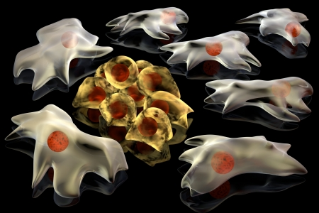 3d render illustration of cancer cells. A group of differentiated cells surround another group of actively divided cancer cell  illustration
