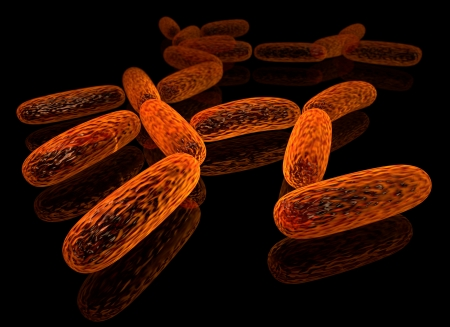 3d rendered group of bacillus photo