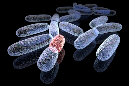 3d rendered concept of transformed bacteria photo