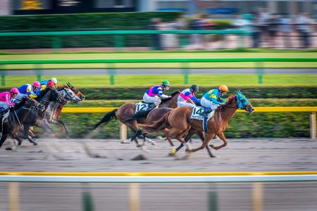 cavallo in corsa: Vincere momento del fantino di Tokyo torneo corse di cavalli Editoriali