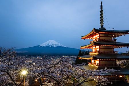 chureito: Night scene of Chureito Pagoda and Mt. Fuji with blooming sakura