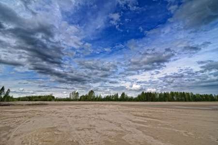 Sandy beach with bushes and cloudy sky
