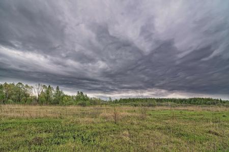 Dark dramatic landscape stormy sky over wetlands Stock Photo