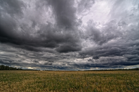 Autumnal field and sky Stock Photo
