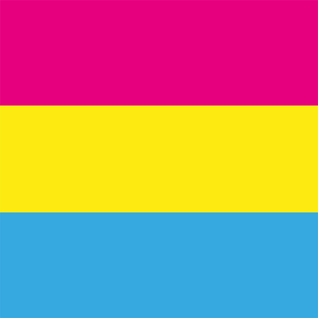 Pansexual movement lgbt symbol color flat flag. Sexual minorities, gays and lesbians. Freedom concept. Vector illustration