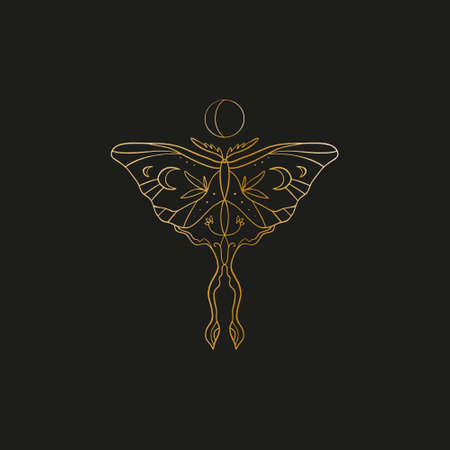 Sacred line geometric symbol with butterfly and moon phase, gold figure on black background. Abstract mystic geometry. Vector illustration.